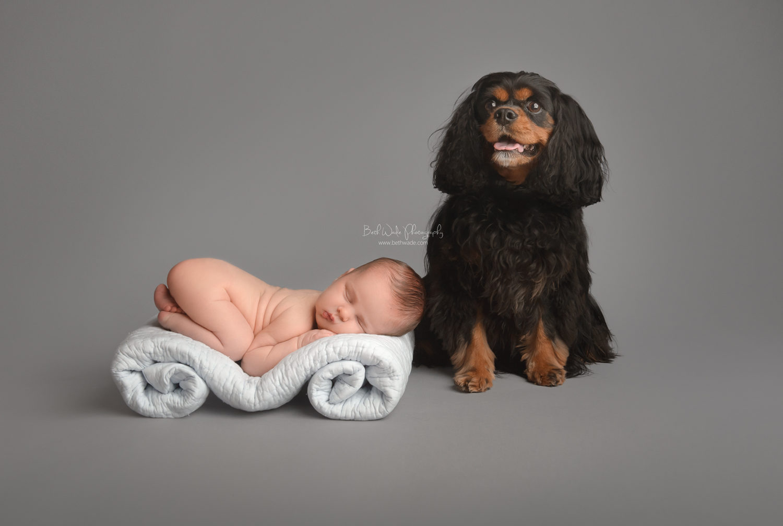 sleepy 11 day old baby boy ~ furry big sister {charlotte newborn photographer}