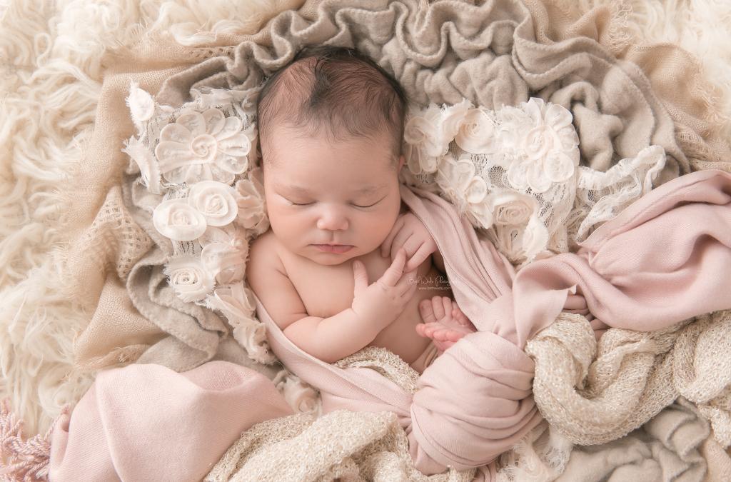 welcome baby girl {steele creek charlotte newborn photographer}
