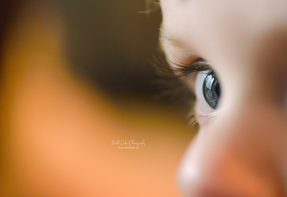 macro lens love {charlotte baby photography}