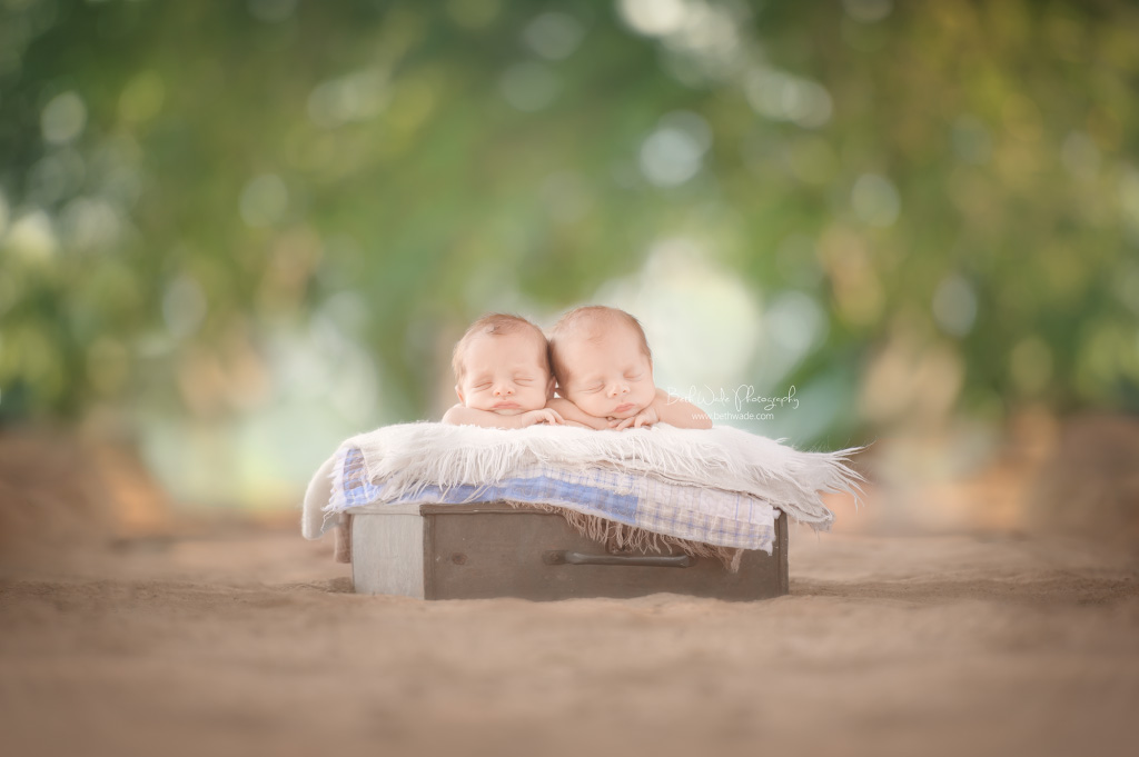 newborn boy twins! 19 day old brothers {south charlotte baby photography}