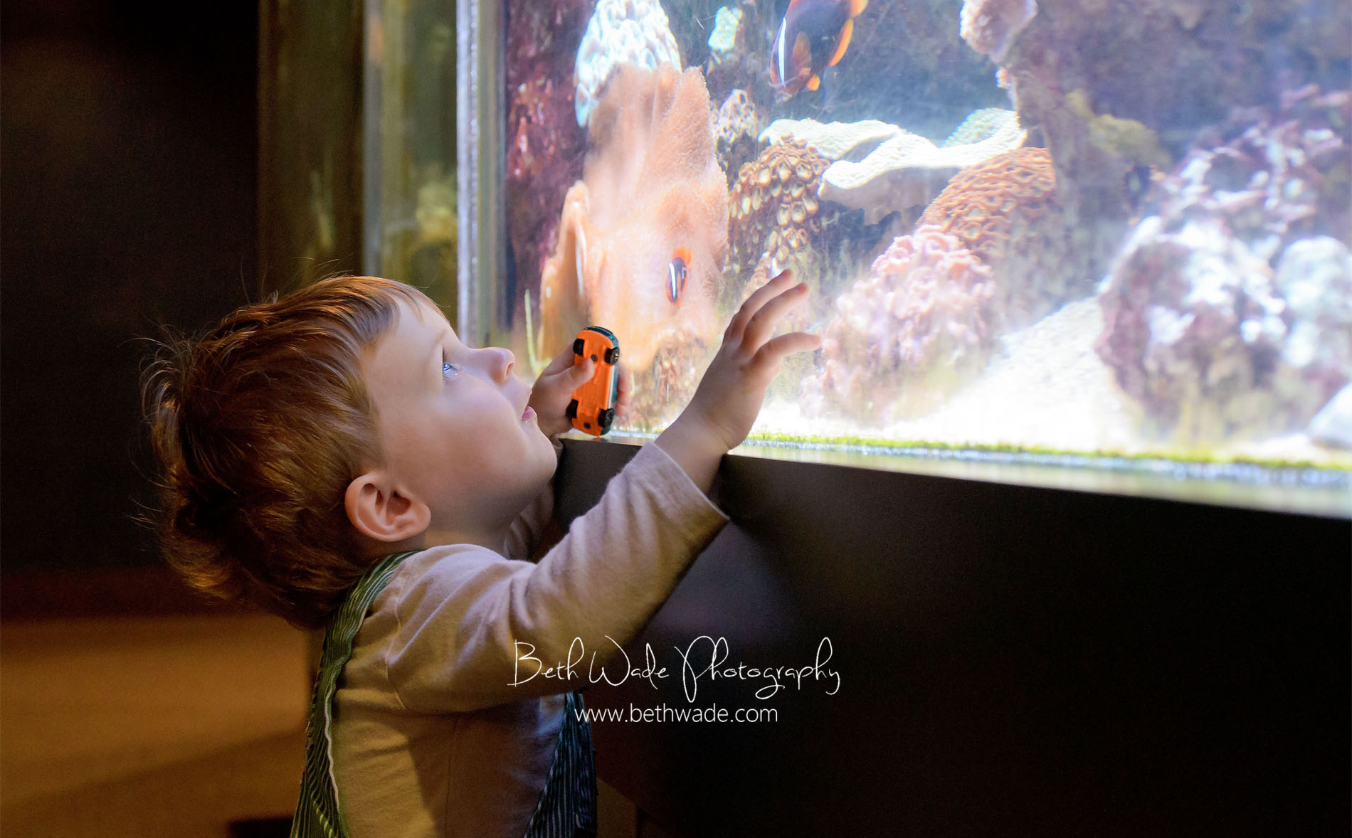 family trip to Riverbanks Zoo {charlotte lifestyle photographer}