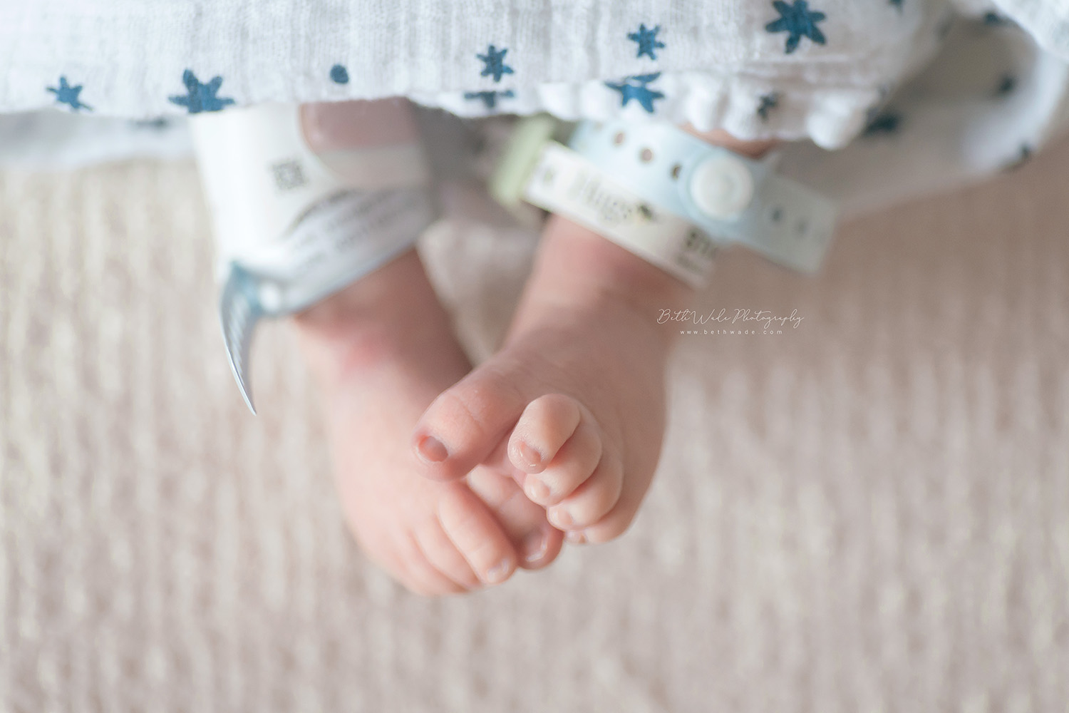 baby brother - 24 hours old video {charlotte newborn photographer}