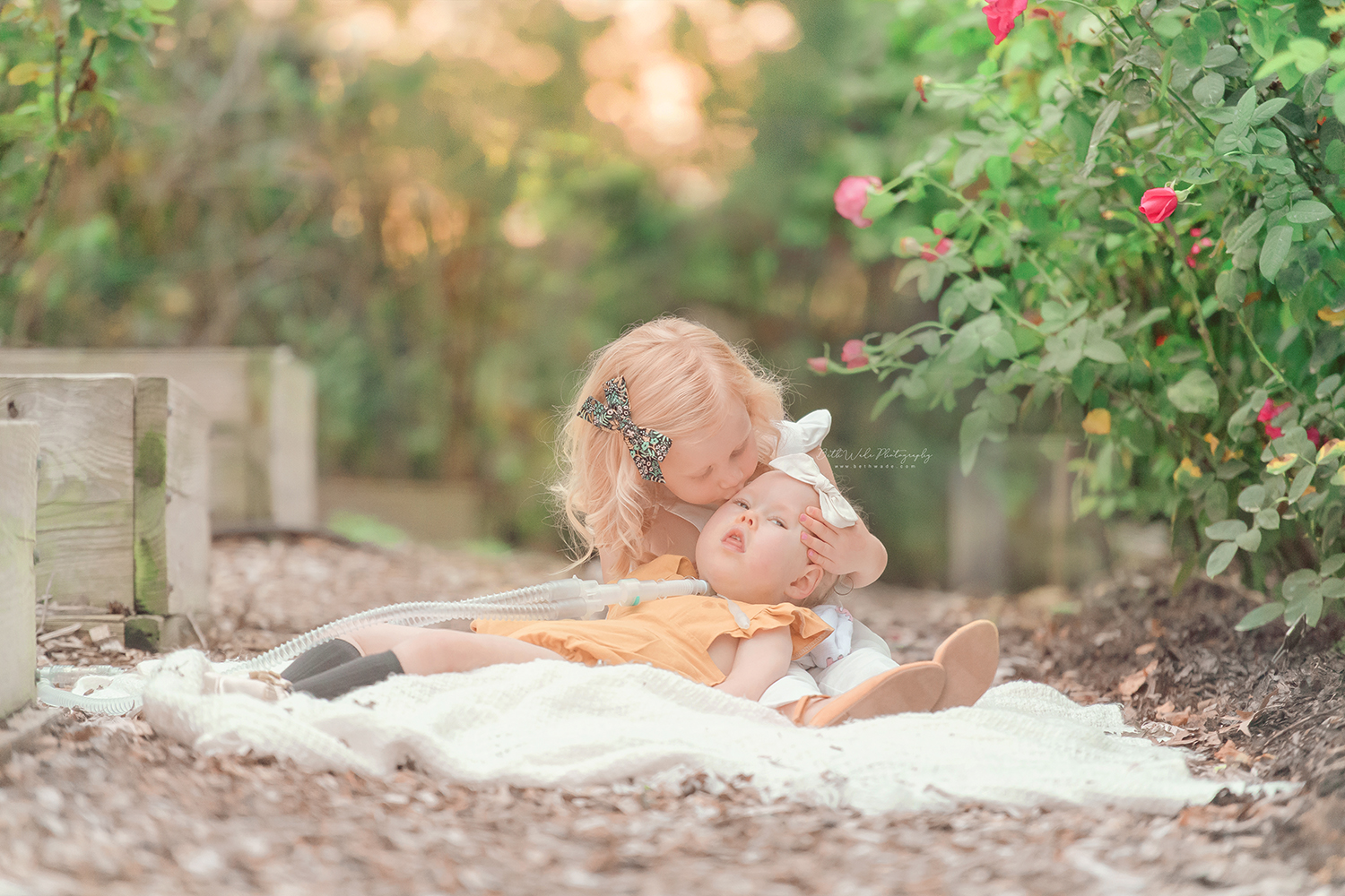 autumn holiday photos ~ family of 4 {charlotte baby photographer}